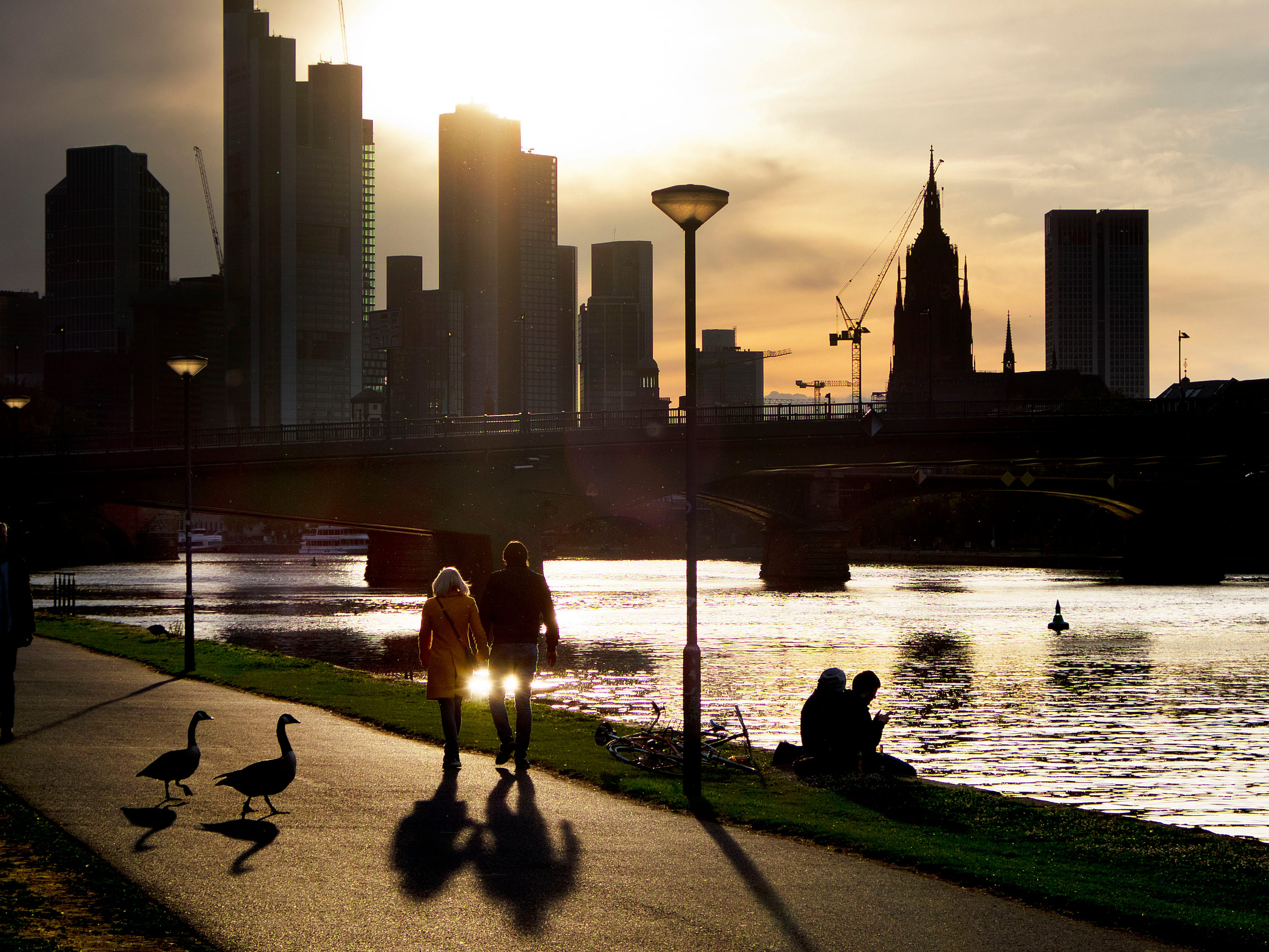 A couple walks along the river Main as two geese pass during sun set in Frankfurt, Germany, Friday, May 10, 2019. (AP Photo/Michael Probst)
