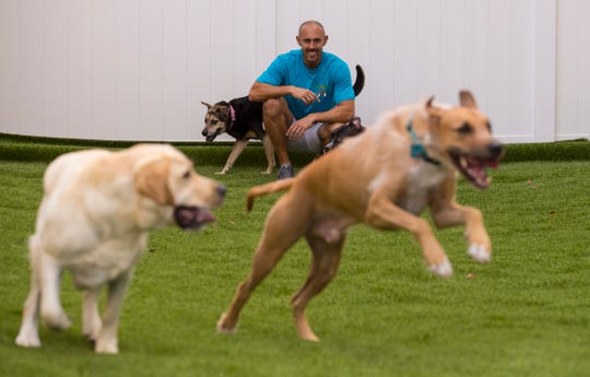 A large play yard for dogs is one of the amenities available at Tiki Tails Dog Resort in Cape Coral. The newly opened facility also offers customers boarding, daycare and grooming services.