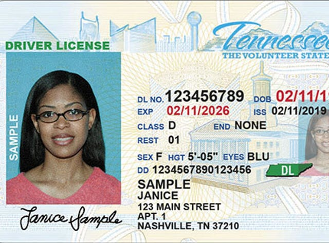 tn drivers licence renewal fee