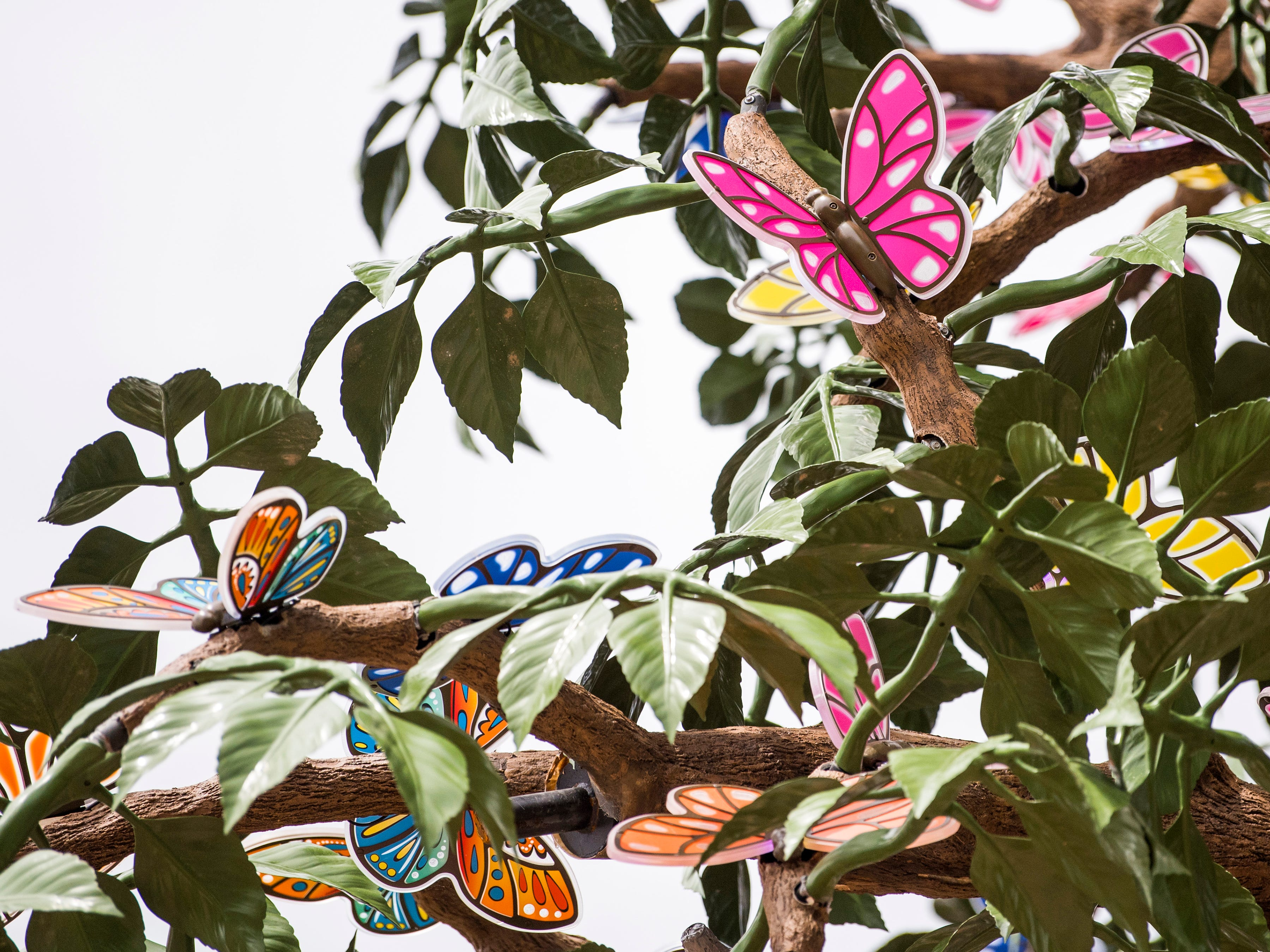 Butterflies on the Wildwood Tree during the grand opening of Dollywood's new Wildwood Grove expansion on Friday, May 10, 2019.
