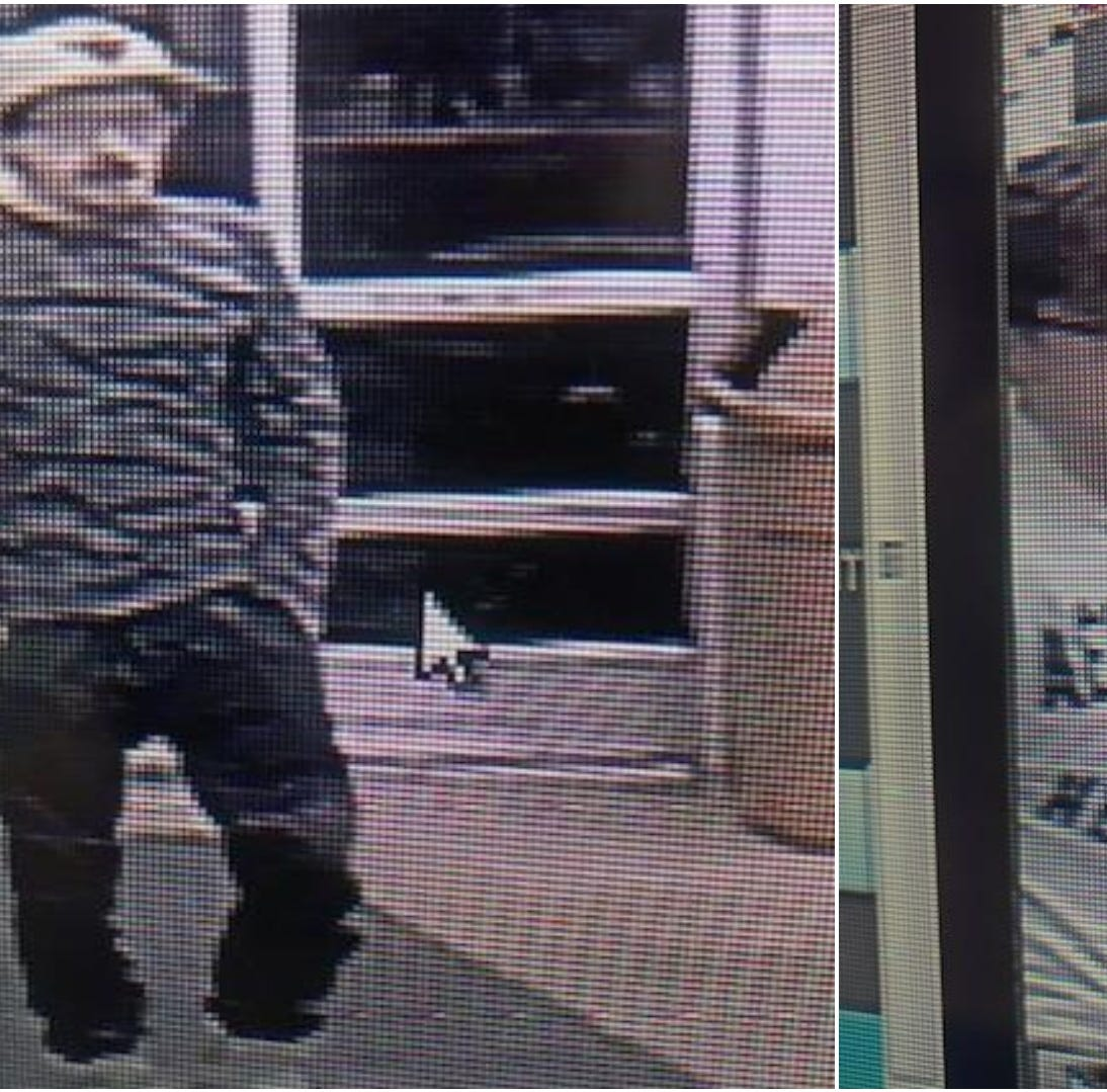 Help identify thieves