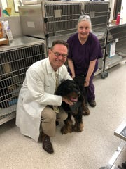 Stephen Johnston, an ASU scientist and professor, has worked for 12 years on a vaccine to prevent canine cancer. Trilly is the the first dog to receive the vaccine in a trial that launched early May.