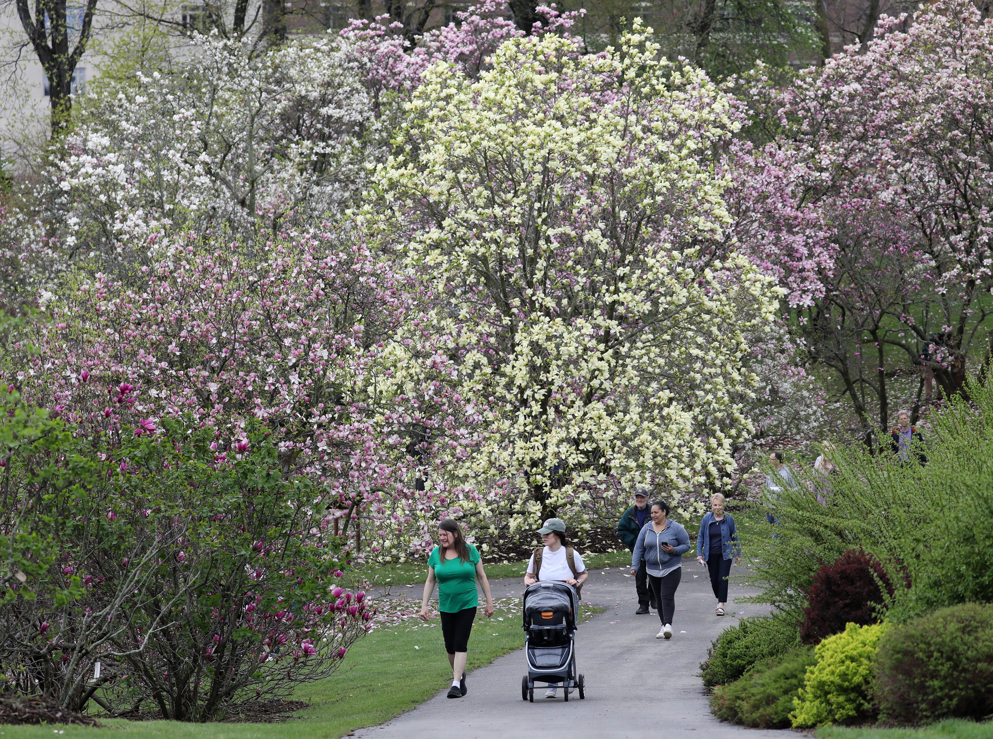 Opening day of the 2019 Lilac Festival.