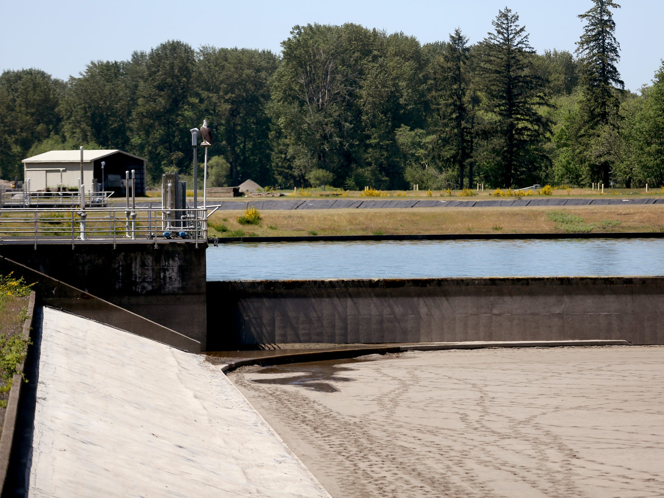 An empty water basic still has sand at the bottom from a filtration system treatment at the Geren Island Water Treatment Facility near Stayton on May 10, 2019. Salem officials are planning to spend more than $75 million to build defenses against toxic algae, in an effort to avoid a rerun of last year's drinking water crisis.