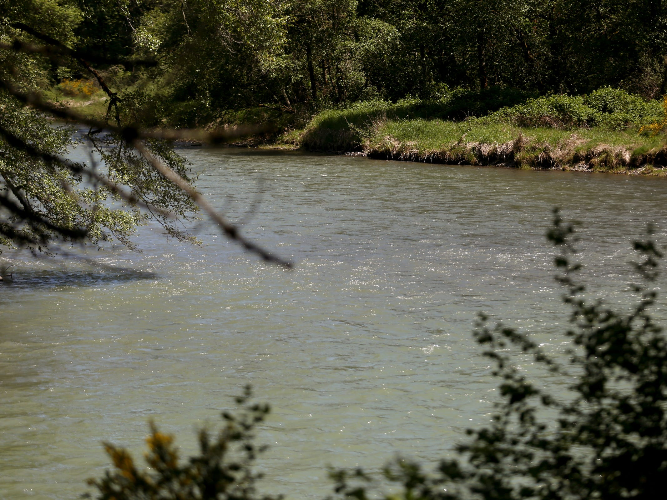 The North Santiam River at the Geren Island Water Treatment Facility near Stayton on May 10, 2019. Salem officials are planning to spend more than $75 million to build defenses against toxic algae, in an effort to avoid a rerun of last year's drinking water crisis.