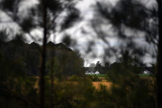 Beyond a canopy of trees is the land that is believed to have been the property of Anthony and Mary Johnson, who called the area home in the 17th century in Pungoteague, Va.