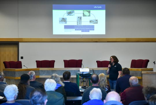 People gather for a public informational meeting led by Minnesota Department of Agriculture plant health specialist Jennifer Burington Thursday, May 9, at the Sauk Centre City Hall.