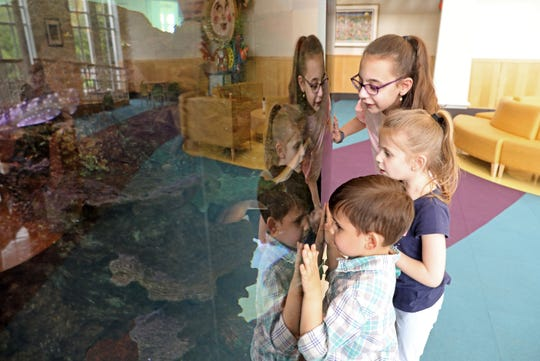 Tess Ranieri, 10, who was born at 25 weeks, looks at the aquarium with her sister Grace, 5, and brother Jack, 4, at Maria Fareri Children's Hospital May 9, 2019 in Valhalla. Their mother, Patti Ranieri, volunteers at Maria's Hope, a program helping new moms of micro preemies to navigate an emotional, scary time.
