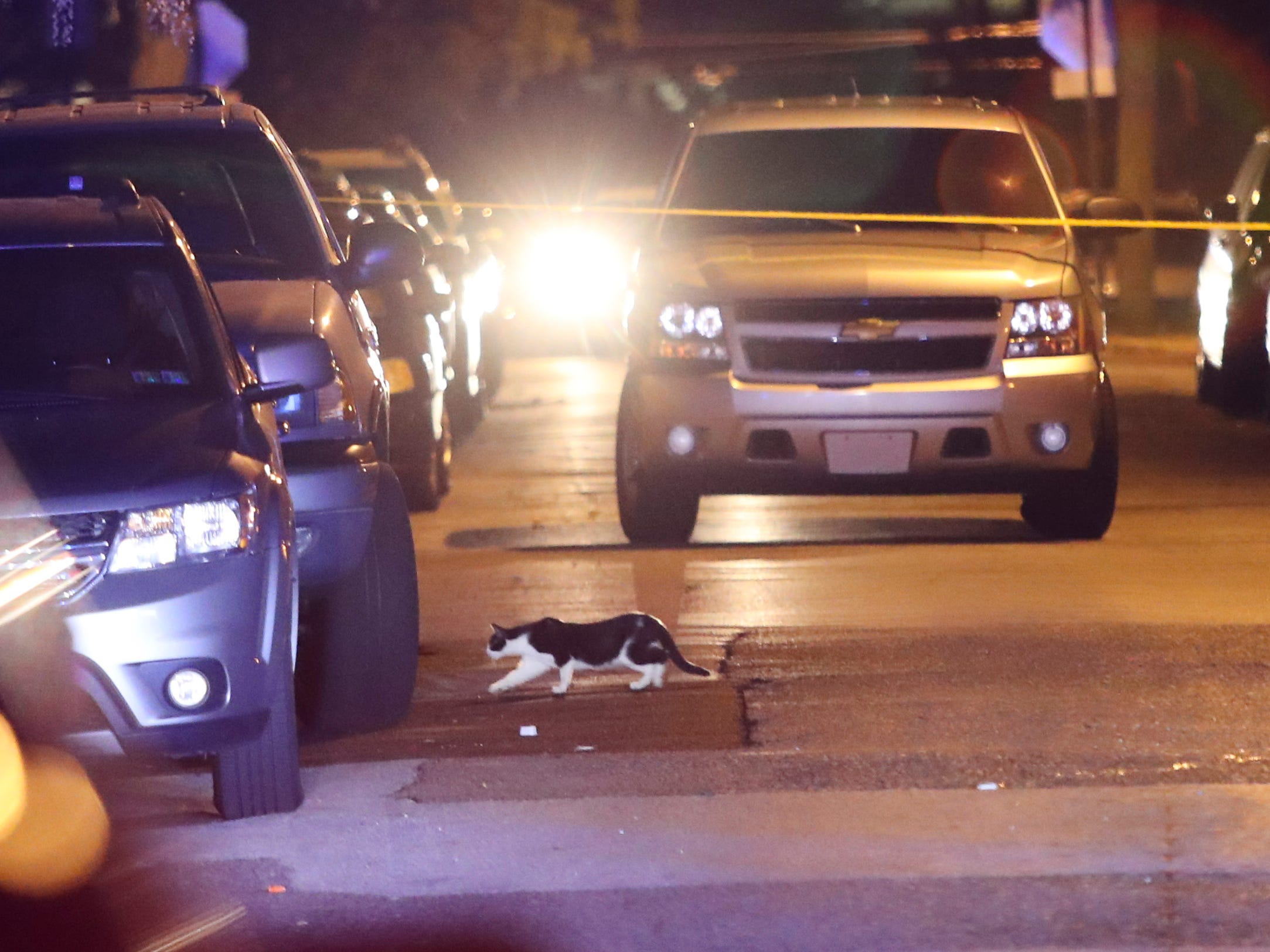 Wilmington police investigate a shooting reported about 10 p.m. in the area of Helen Chambers Park on Madison Street. Police had taped off Madison Street from W. 4th Street to W. 7th Street but concentrated in the 600 block in and along the park.
