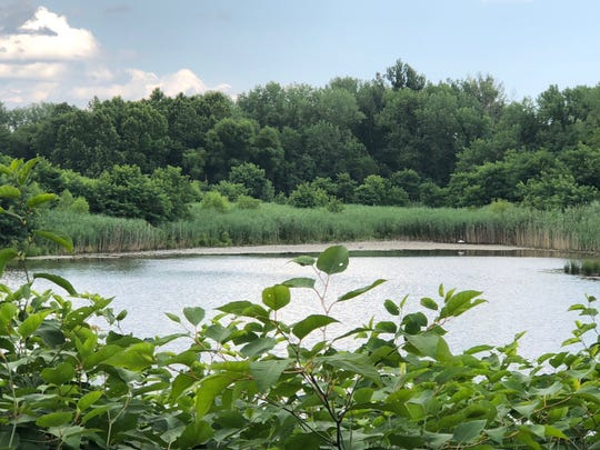 Palmyra Cove Nature Center offers scenic views along the tidal Delaware River.