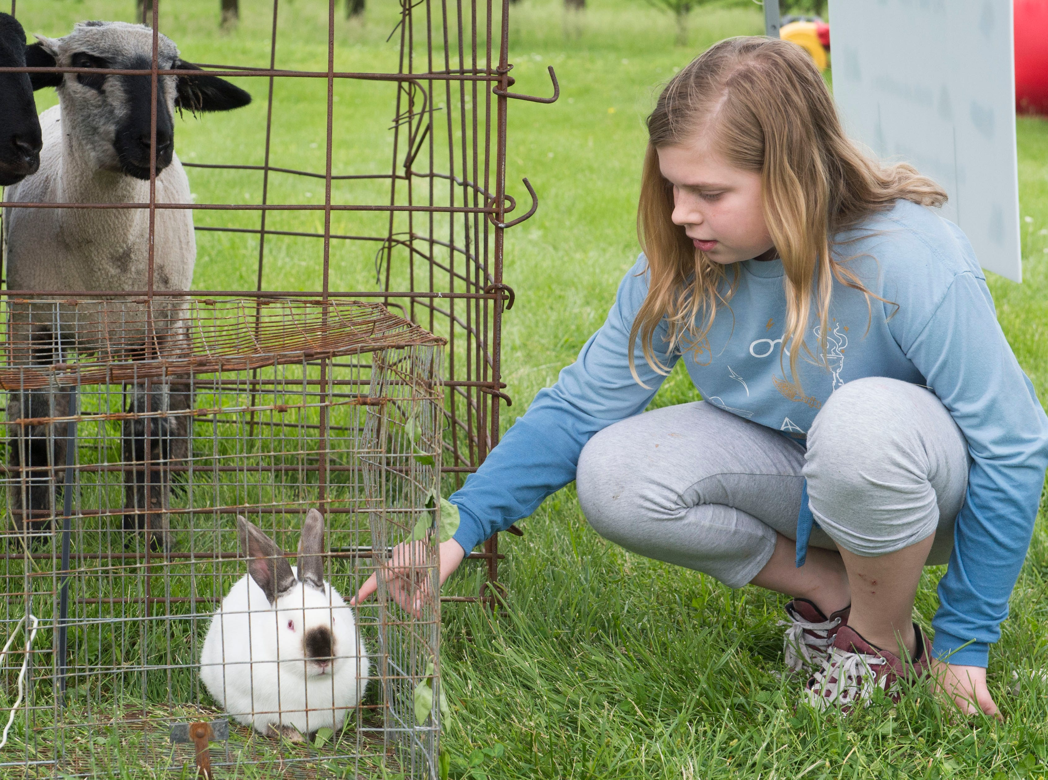 Jude Koch, 10, pets a rabbit during the 2019 Spirit Fest Saturday, May 11, 2019. Spirit Fest is a day of fun and activities that benefits the Spirit Medical Fund which raises money for the Evansville Animal Care and Control shelter.
