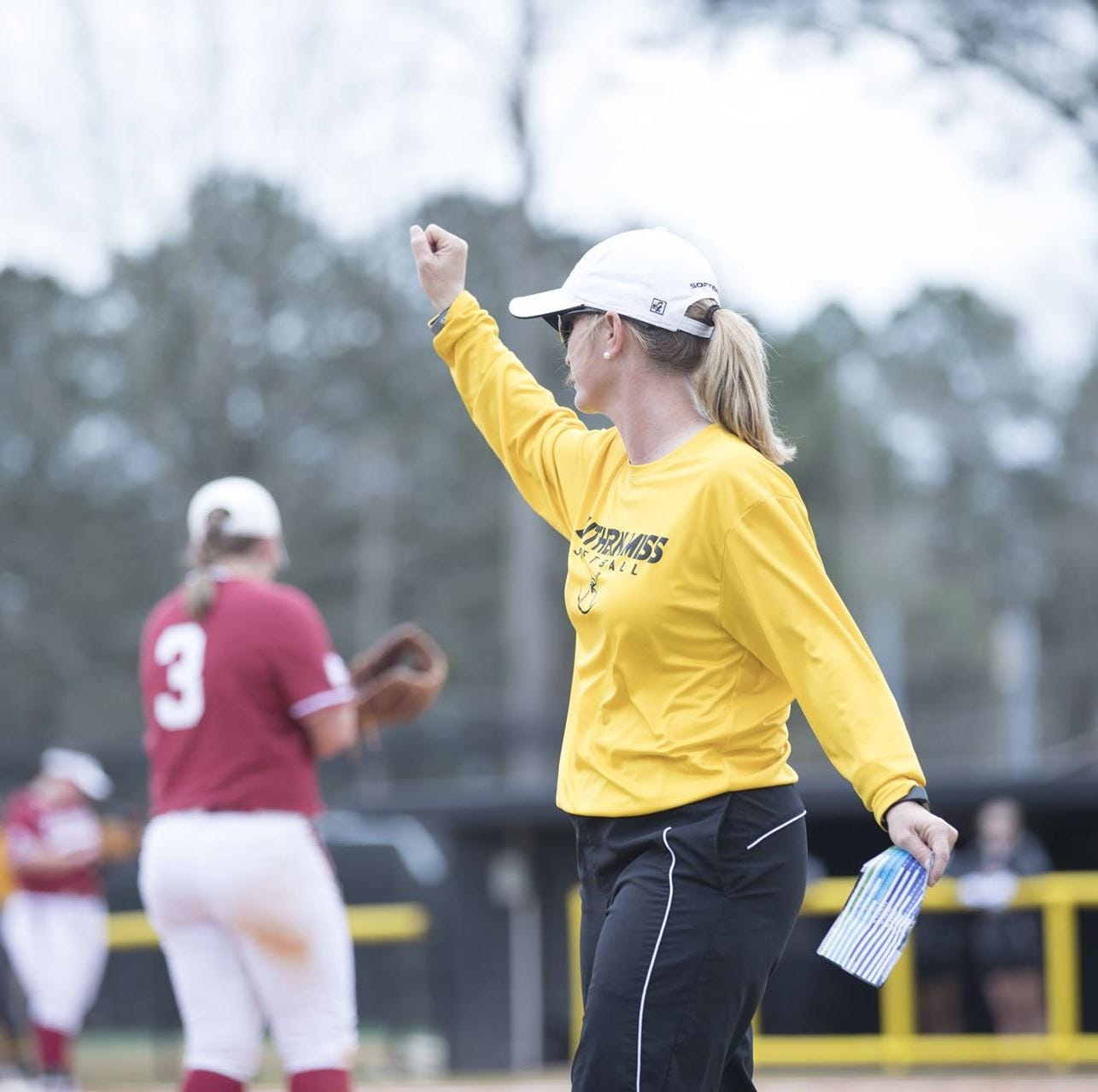 'Forever grateful:' Southern Miss head softball coach resigns