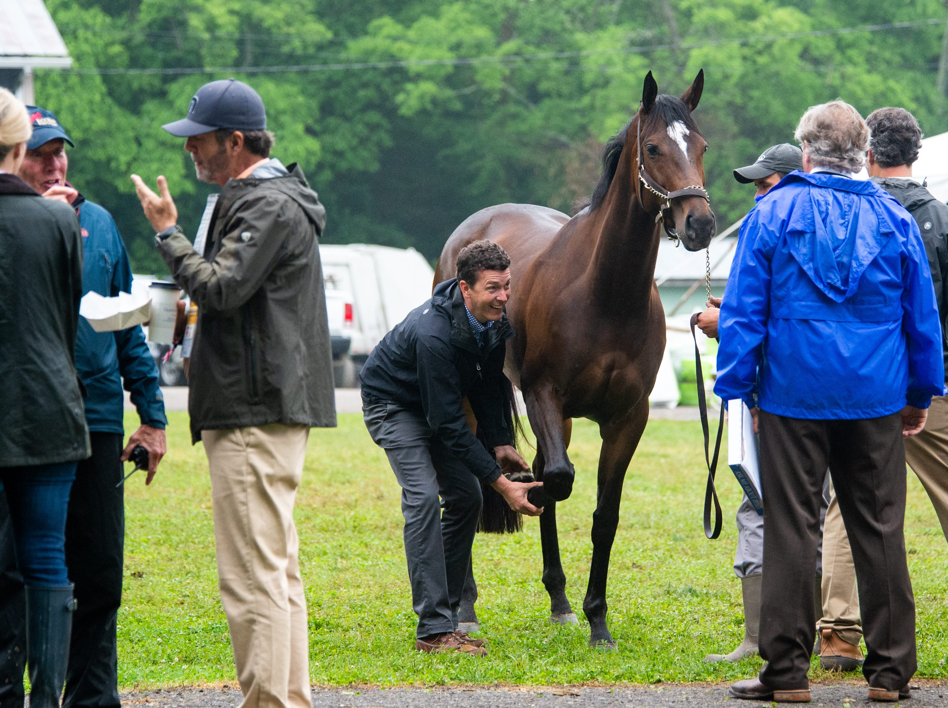 People examine a horse during the Iroquois Steeplechase at Percy Warner Park Saturday, May 11, 2019, in Nashville, Tenn.