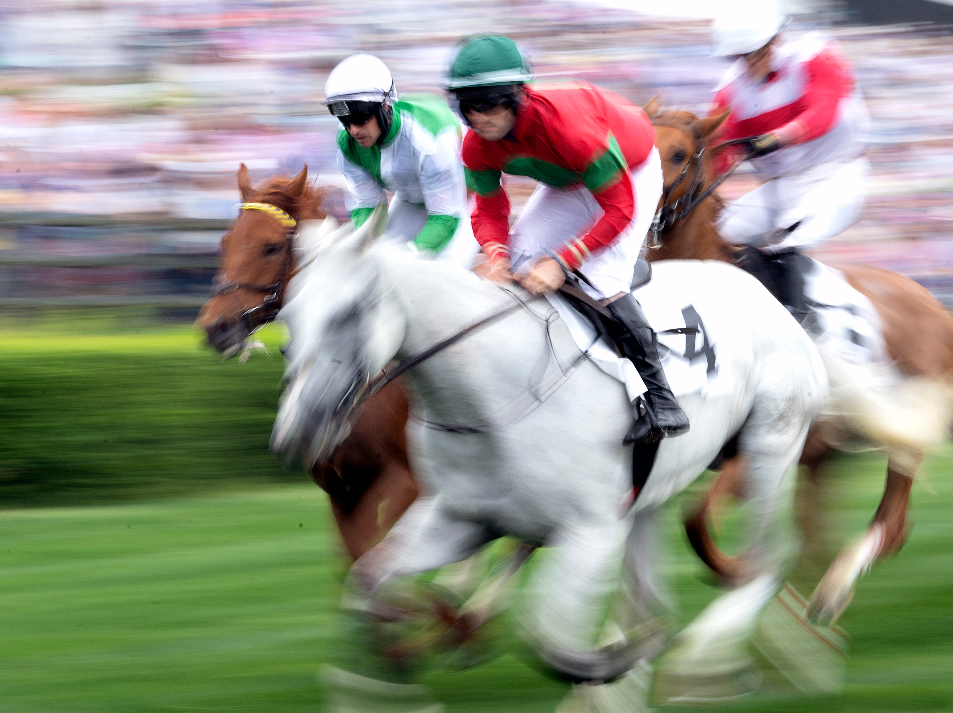 Horses race during the 78th Iroquois Steeplechase at Percy Warner Park in Nashville on Saturday, May 11, 2019.