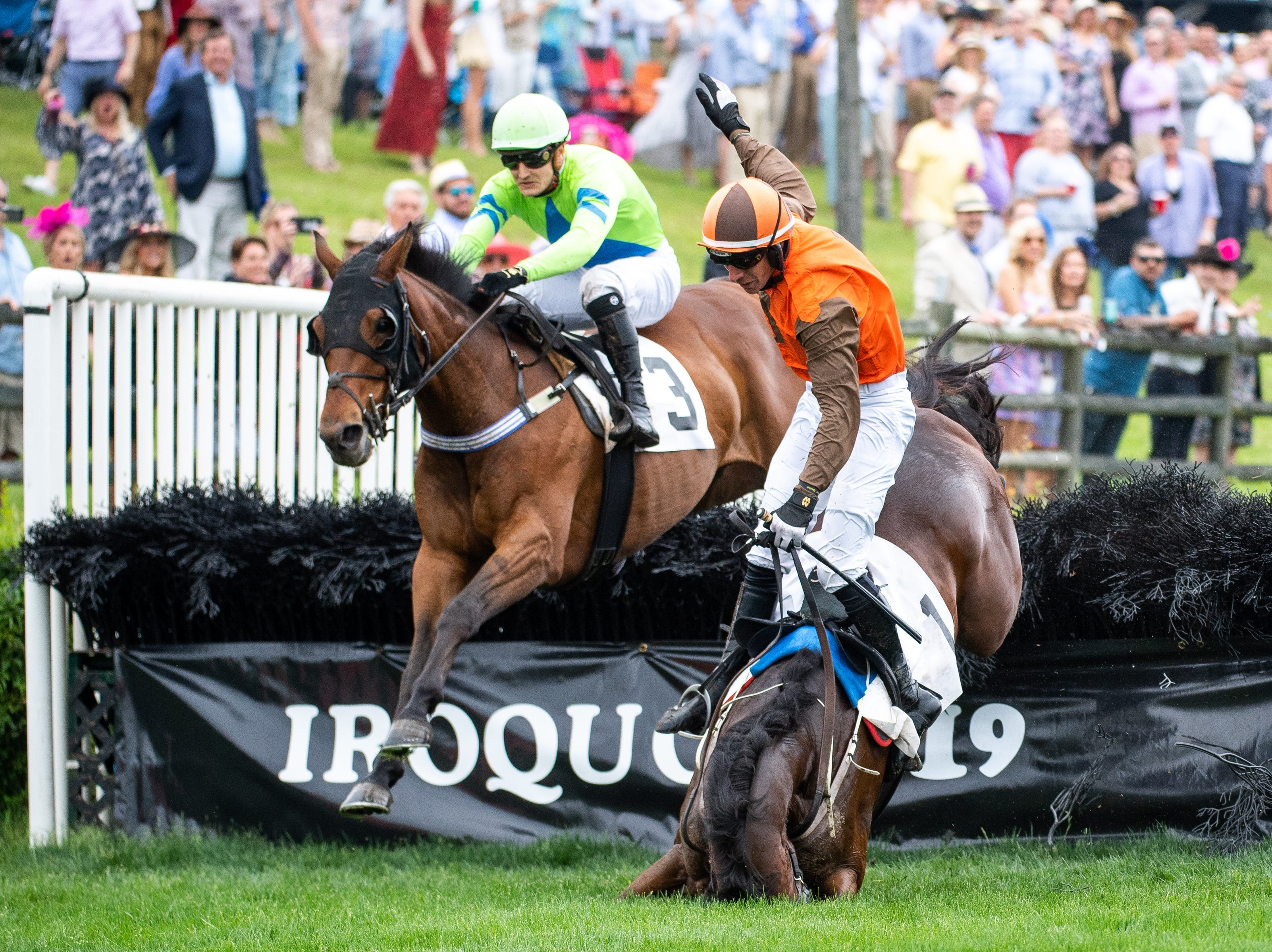 Thoroughbred horse, Cite, falls as Willie McCarthy becomes unseated and Whitman's Poetry carries Michale Mitchell over the last jump of the first race of the Iroquois Steeplechase at Percy Warner Park Saturday, May 11, 2019, in Nashville, Tenn.