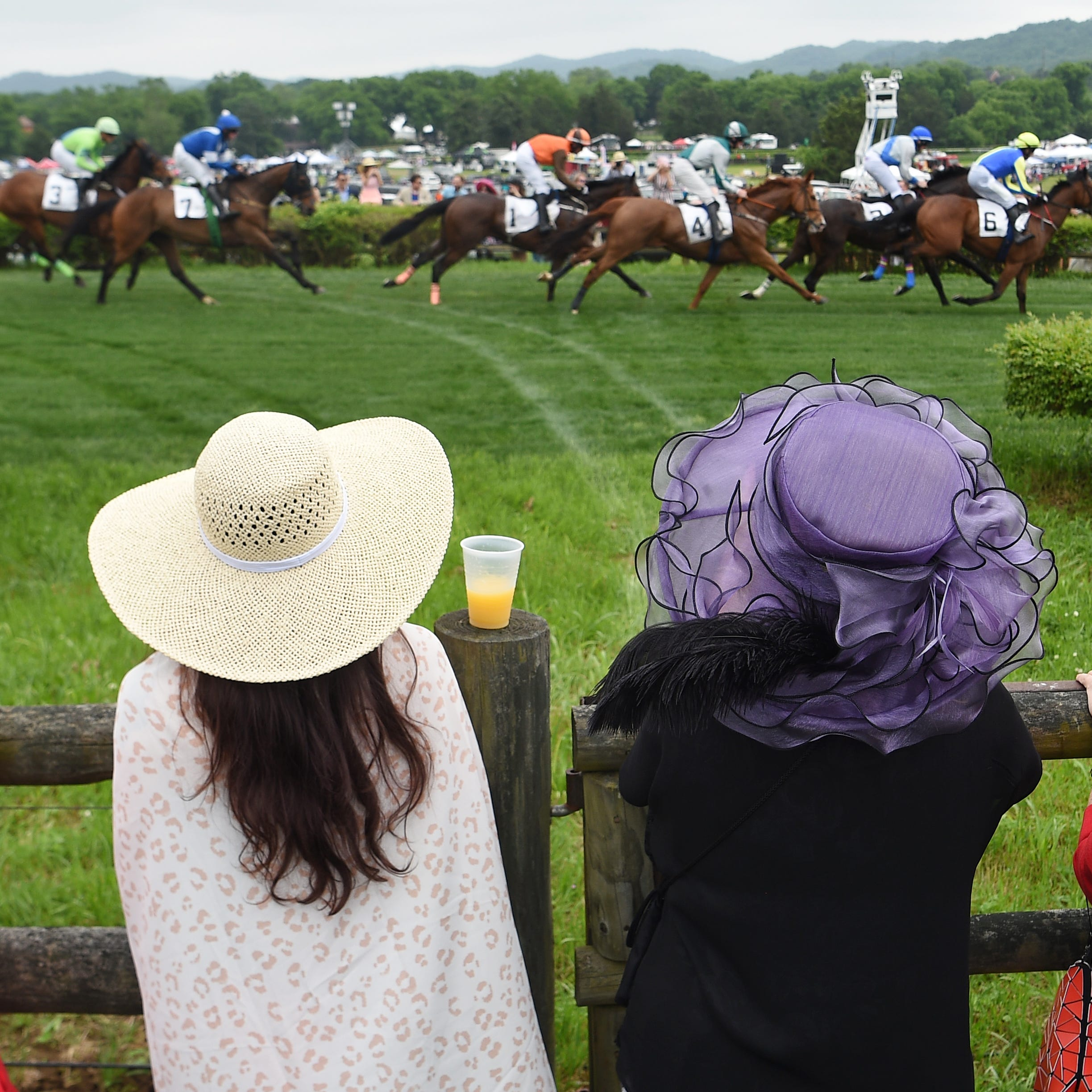 Iroquois Steeplechase attendance about normal despite rain, ticket price increase
