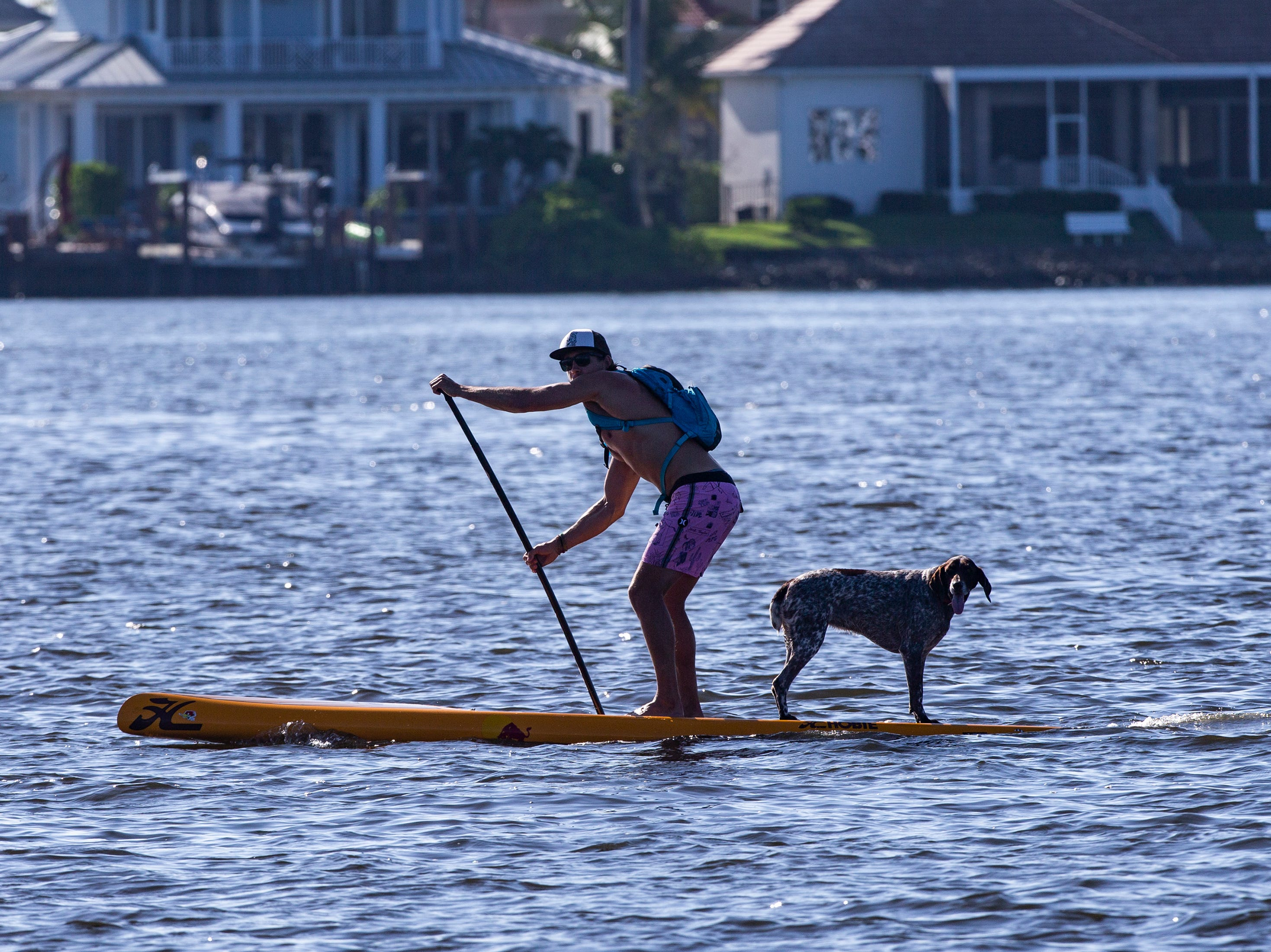 Naples resident, Iggy Sprude and his dog Charlie compete in the amateur stand up paddleboard race, Saturday, May 11, 2019, during the 43rd annual Great Dock Canoe Race at Crayton Cove in Naples.