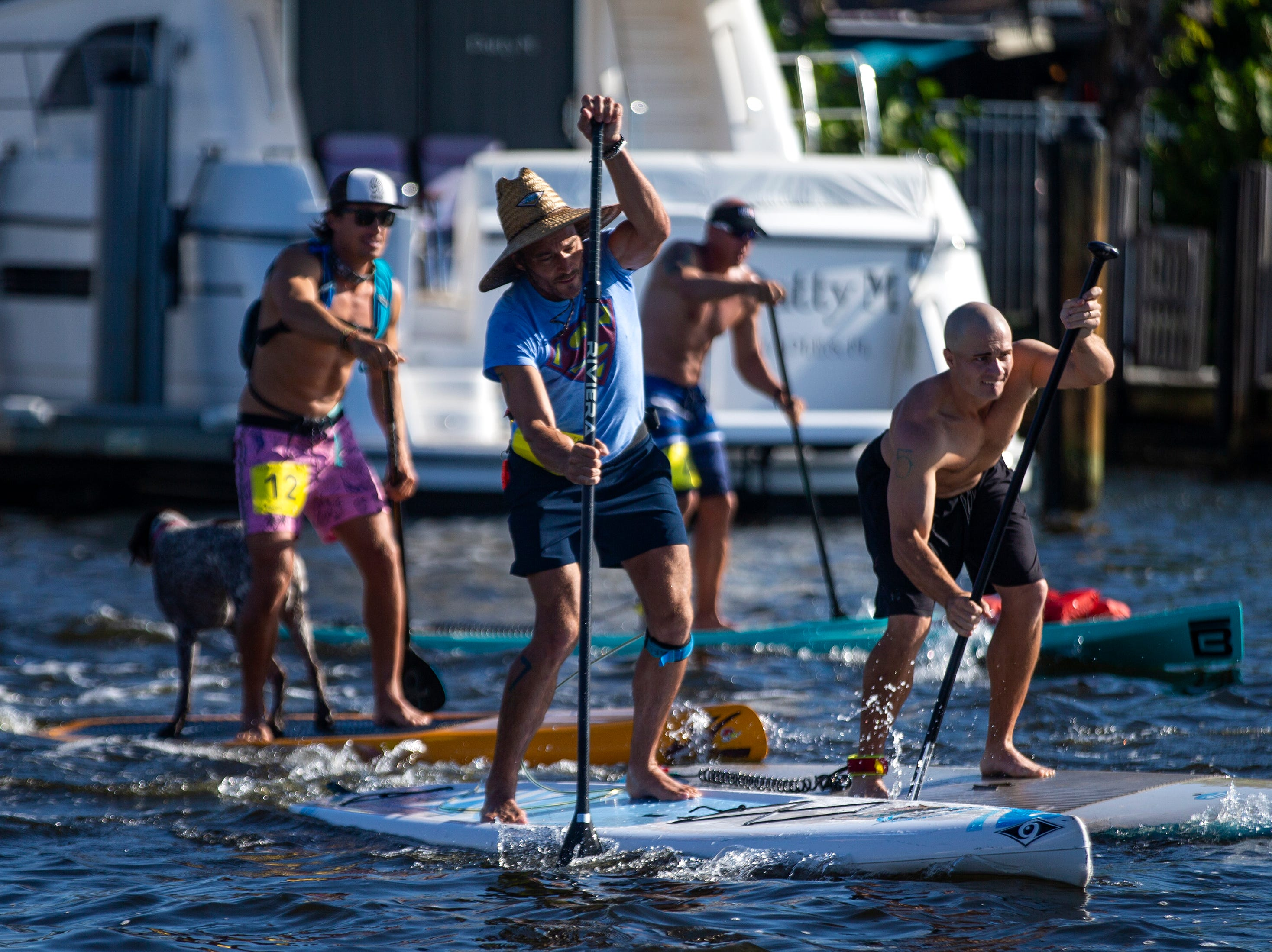 Competitors in the amateur stand up paddleboard race make their way down the race course, Saturday, May 11, 2019, during the 43rd annual Great Dock Canoe Race at Crayton Cove in Naples.