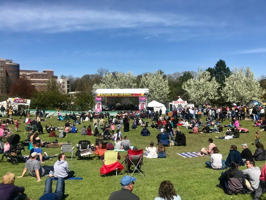 Festival goers dot the field in front of the Sahlen's Free Center Stage at the Rochester Lilac Festival Saturday.