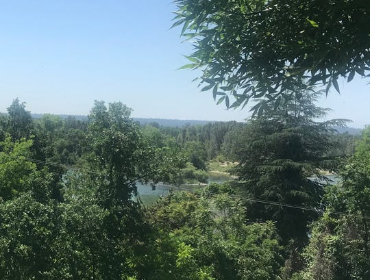 A woman's body was found on an island near this part of the Sacramento River in south Redding. Police say the island is near Girvan Road.
