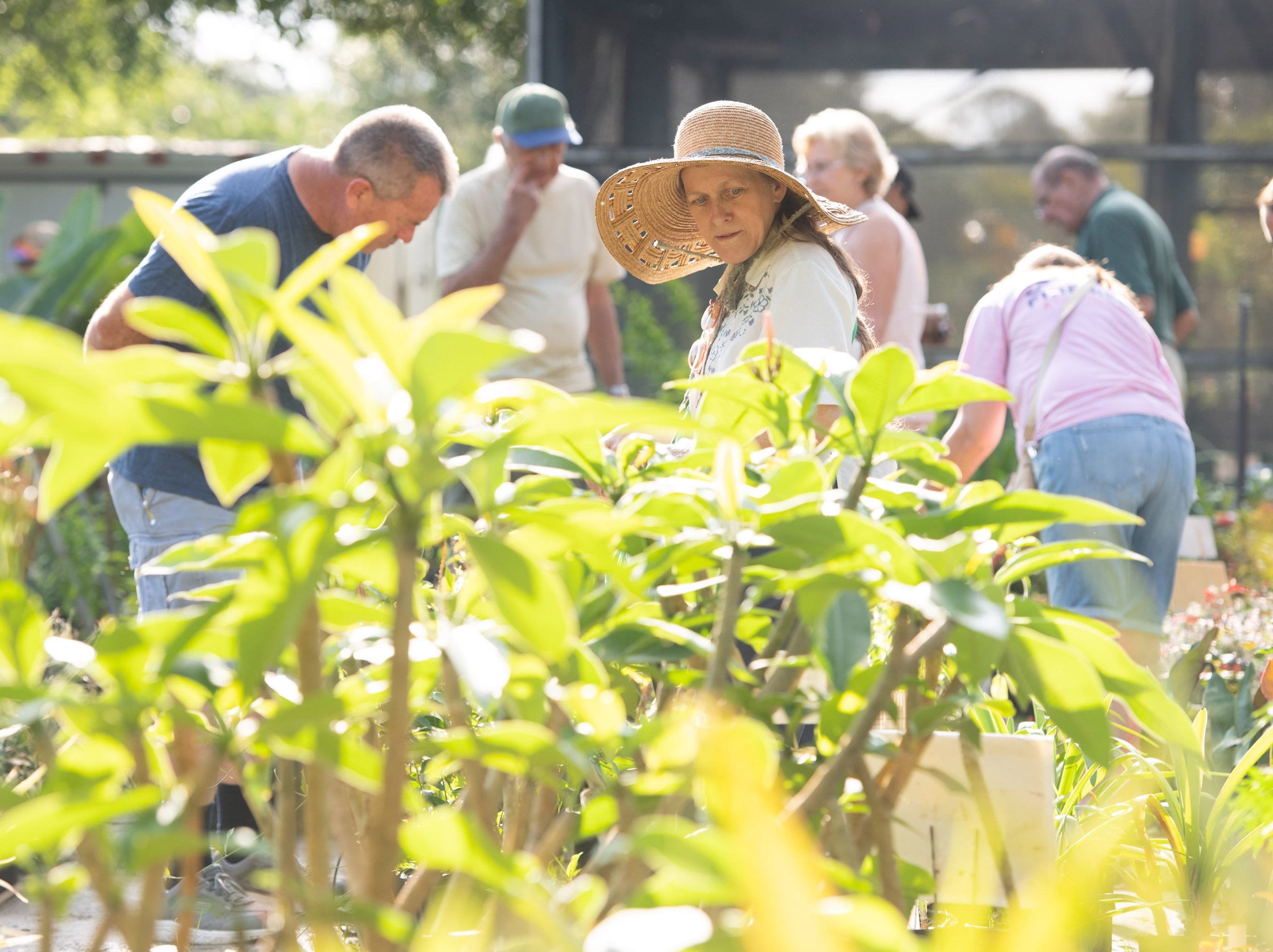 The Spring into Gardening Festival with the St. Lucie County Master Gardener Volunteers takes place Saturday, May 11, 2019, at the University of Florida's IFAS Extension in Fort Pierce.