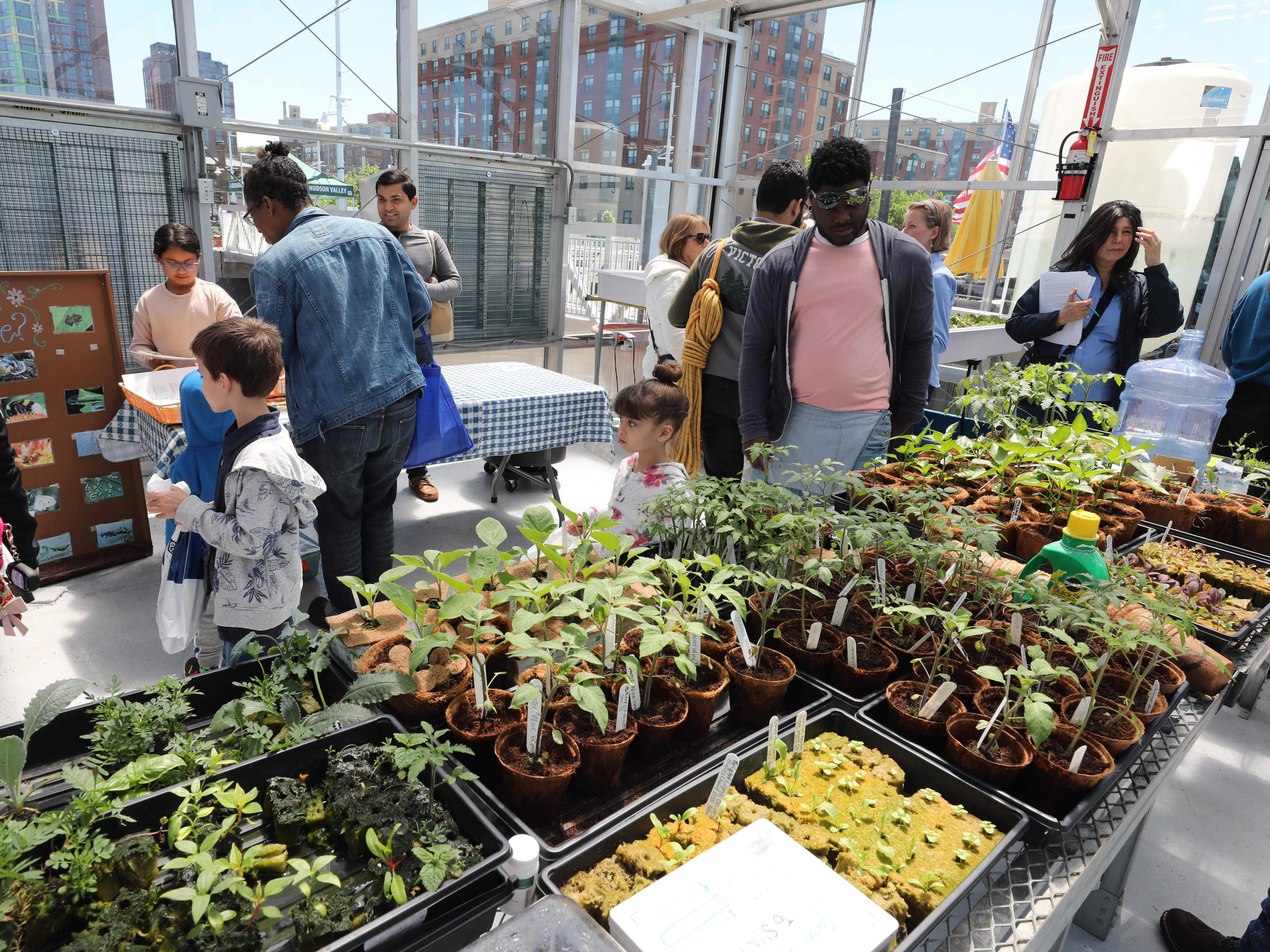 Plants grow on the Science Barge as people take a tour during the 11th annual opening on the Hudson River in Yonkers, May 11, 2019. The floating environmental education center has undergone an almost $1million enhancement, completed over the past two years.