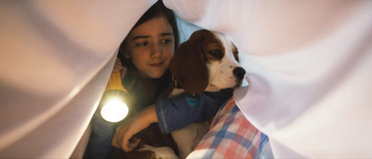 "Young CJ (Abby Ryder Fortson) and Molly, a Beaglier, became besties in ""A Dog's Journey."""