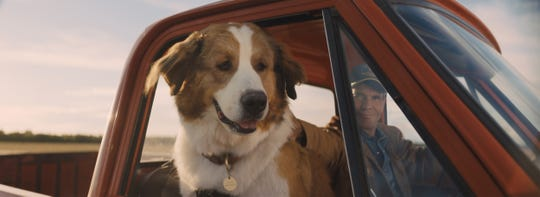 "Bailey as Buddy (voiced by Josh Gad) with Ethan (Dennis Quaid) in ""A Dog's Journey."""