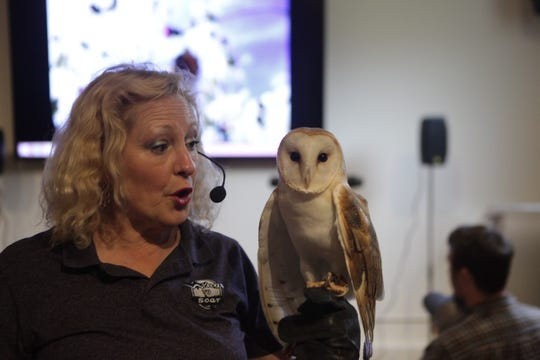 Dale Kernahan shares the stage with a barn owl at Friends of Dunbar Cave's annual Spring Fling on Saturday, May 11, 2019.