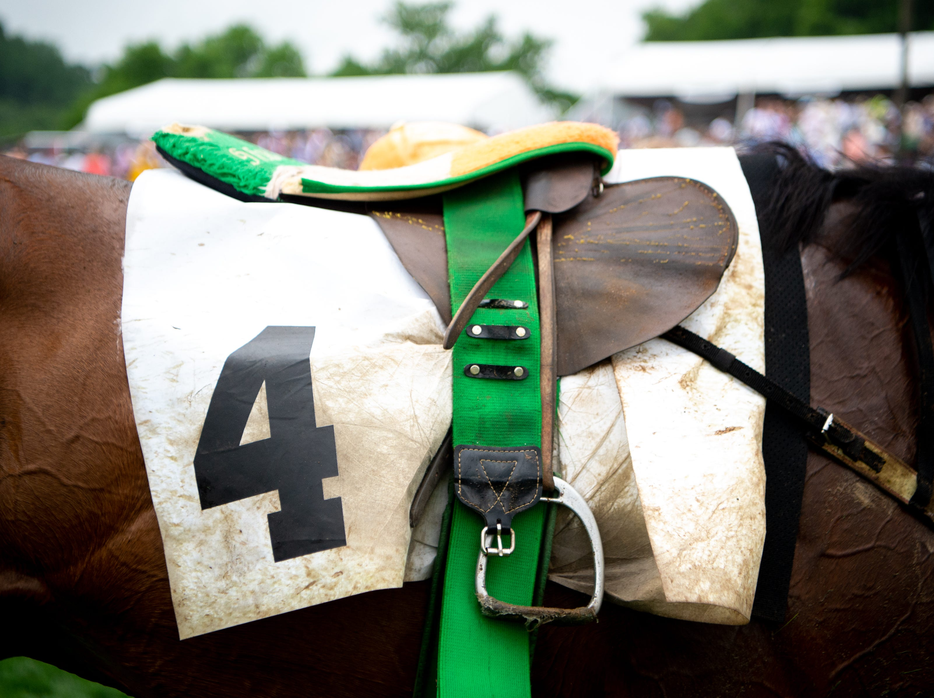 You're No Better waits to have the saddle removed after the fifth race of the Iroquois Steeplechase at Percy Warner Park Saturday, May 11, 2019, in Nashville, Tenn.