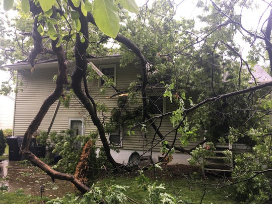 A tree fell on a house on Clifford Road in Elsmere Sunday.