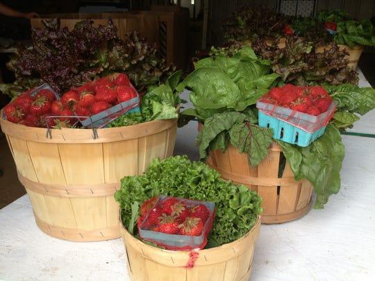 The various CSA options from Von Thun Farms.