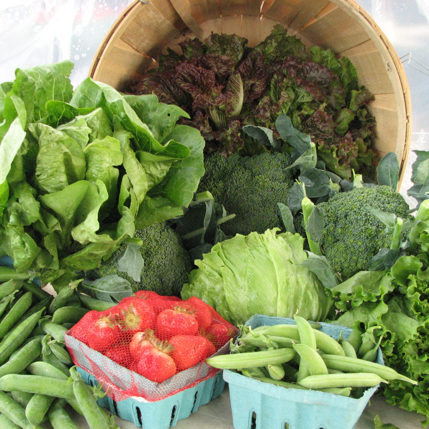 NJ CSAs: How to get weekly farm-fresh fare to your door