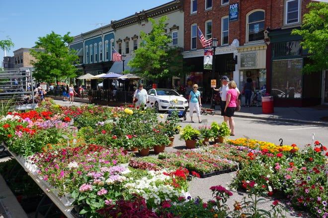 Northville Flower Show