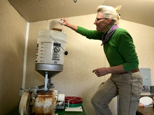 Judy Cornell pours grain into a flour mill, a refurbished mill from a barn near Paradise. Her Conservation Grains farm and craft flour mill in Choteau uses blends of ancient grains for rich flavor and good nutrition.