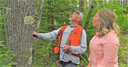 By working with professional foresters, landowners can learn how to enrich their forest experience.