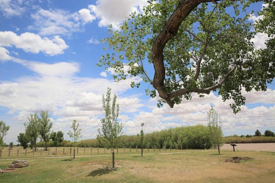 Clouds dot the sky on Monday, May 13, 2019 at La Llorona Park near Picacho Avenue in Las Cruces, as a dry Rio Grande riverbed can be seen in the background.
