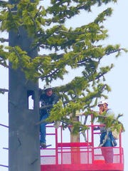 Two crewmen work on a massive cell tower that went up in 2016 near Sudderth Drive and Sutton Road.