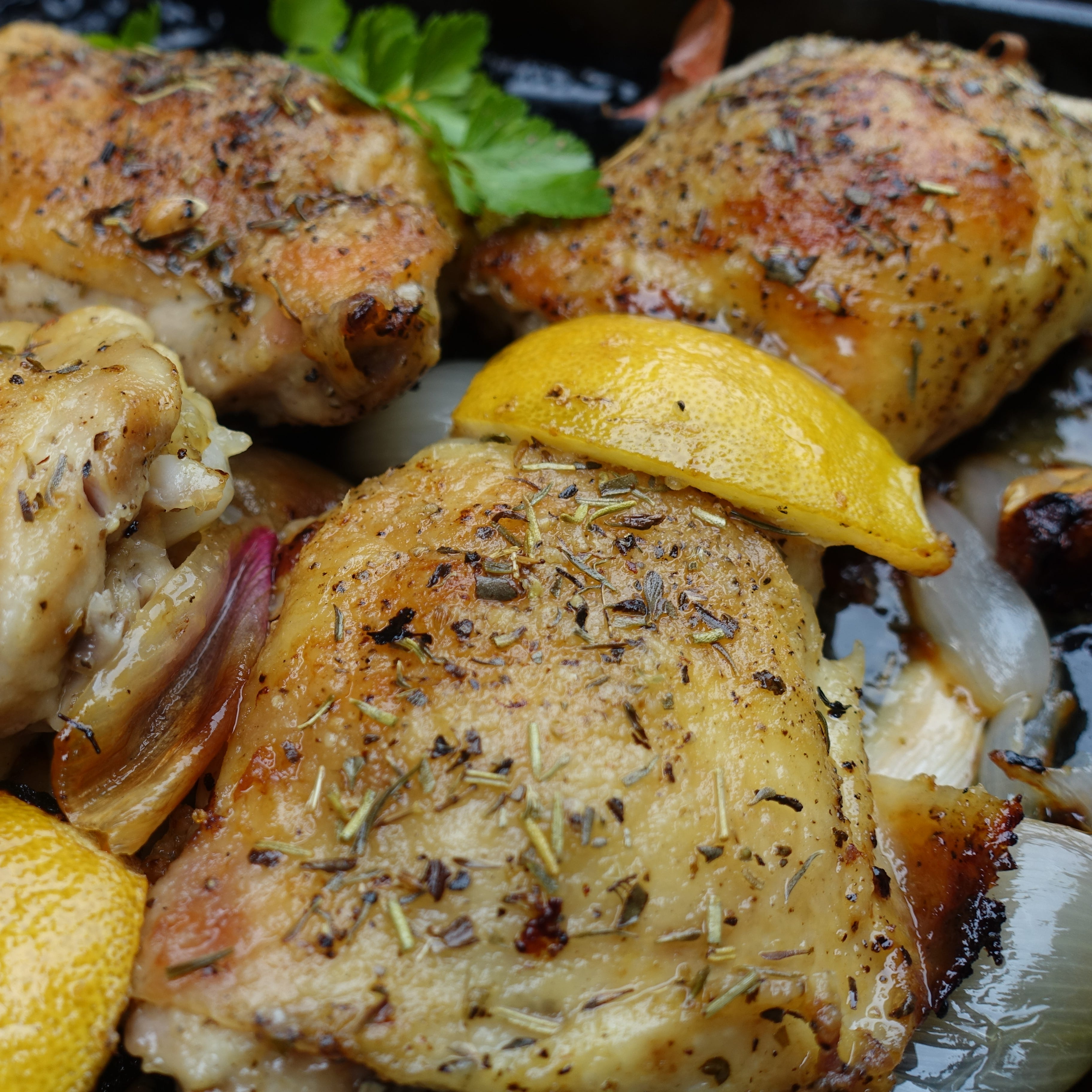 Chicken Provençal a perfect meal to make in a toaster oven