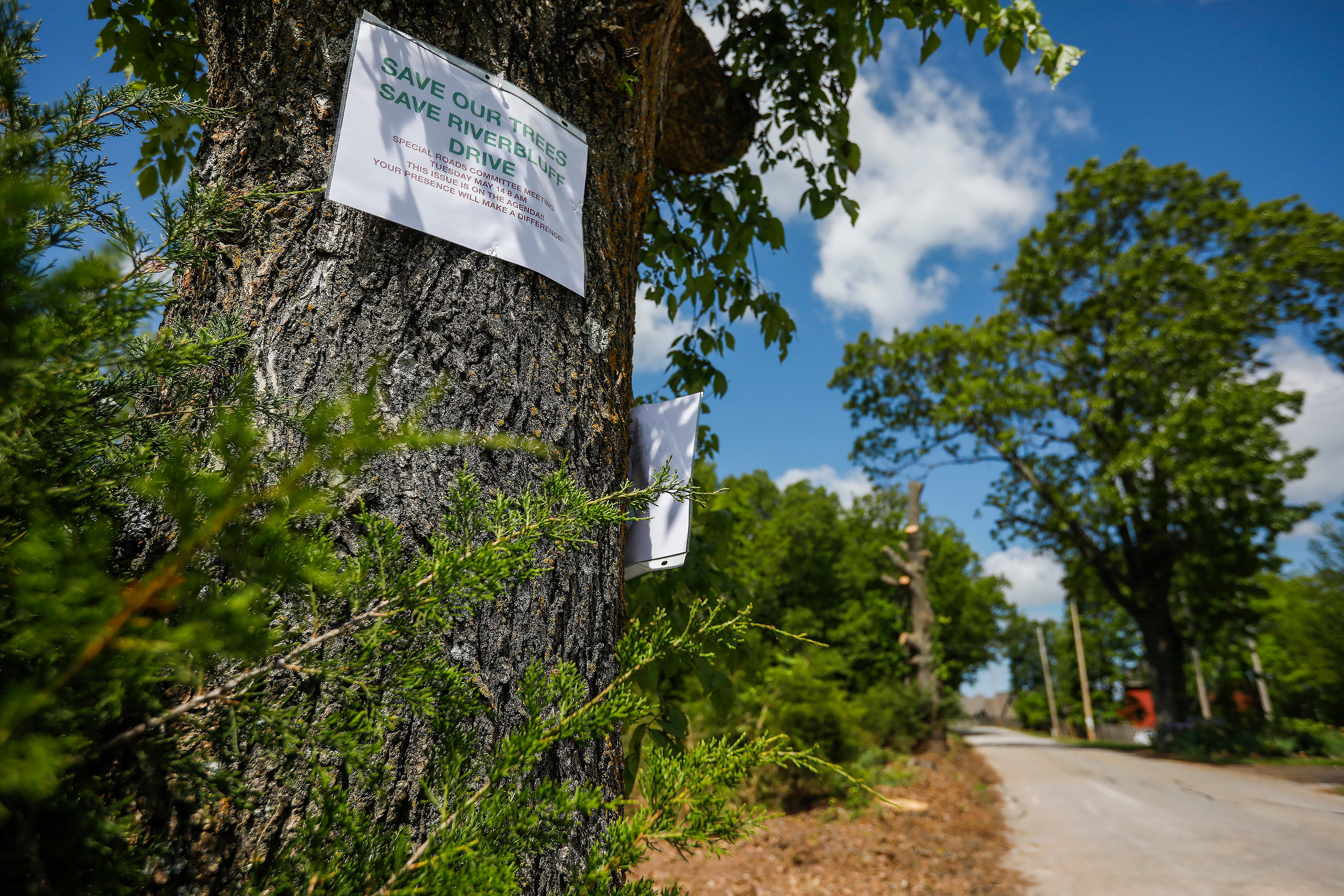 The Christian County special highway commission for Ozark has begun felling trees on River Bluff Drive in order to widen the road.