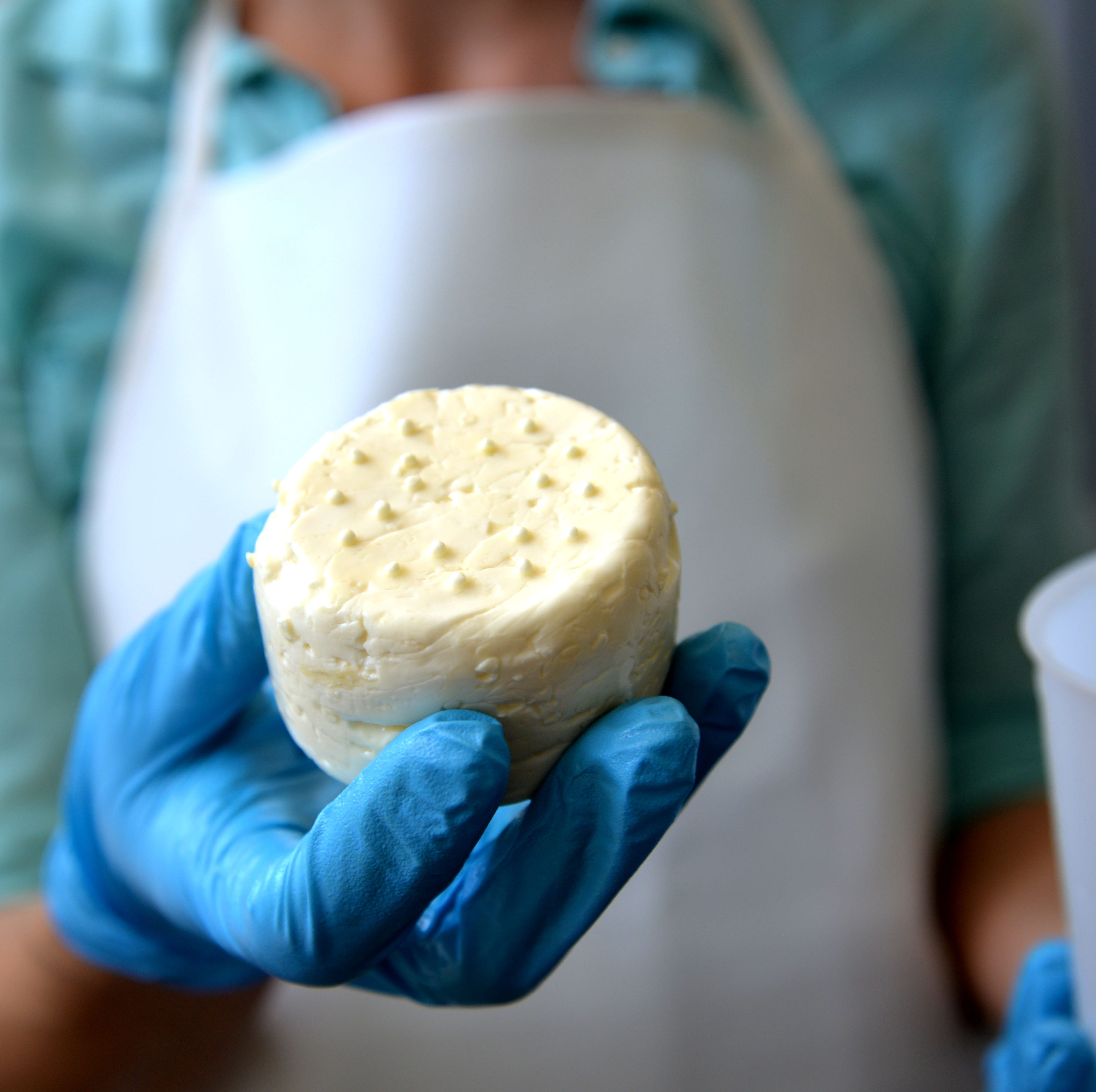 New cheese creamery opens in Staunton: offers small batch cheese, cheese club