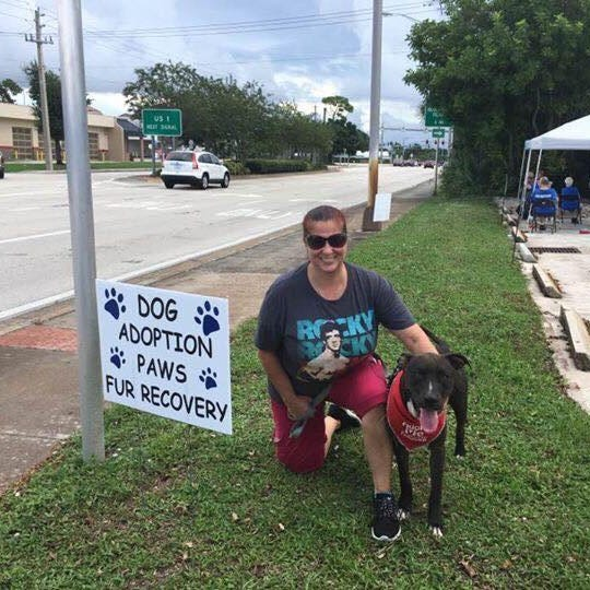 Why it matters pit bull was involved in St. Lucie Humane Society dog attack