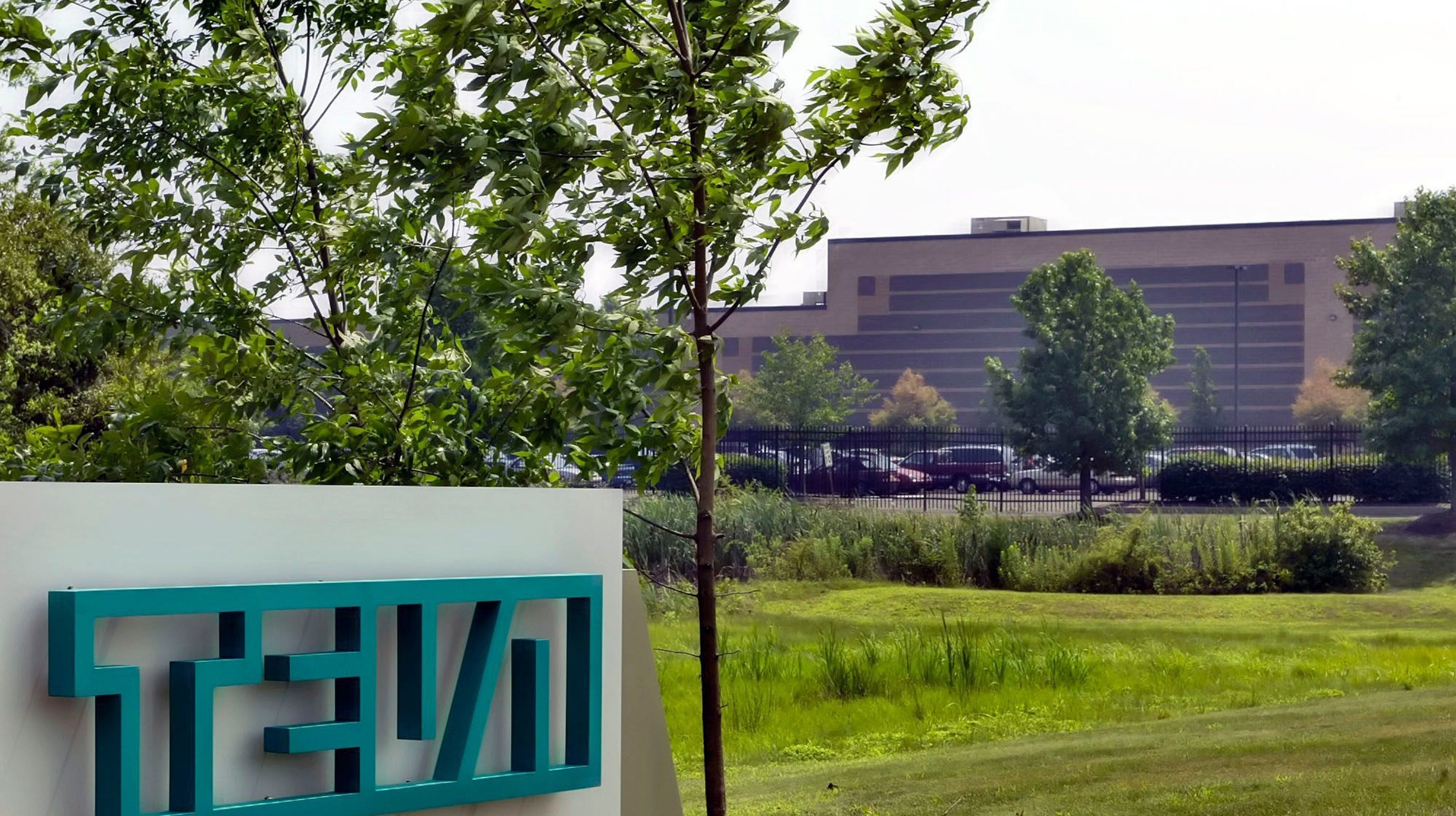 Teva and other generic drug makers accused of price fixing