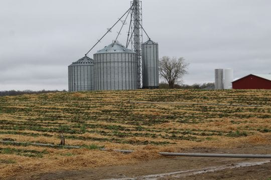A rough winter wreaked havoc on some crops in Sandusky County. Farmers hoped Mother Nature would cooperate for planting season but heavy rains have forced farmers to hold off on planting crops.