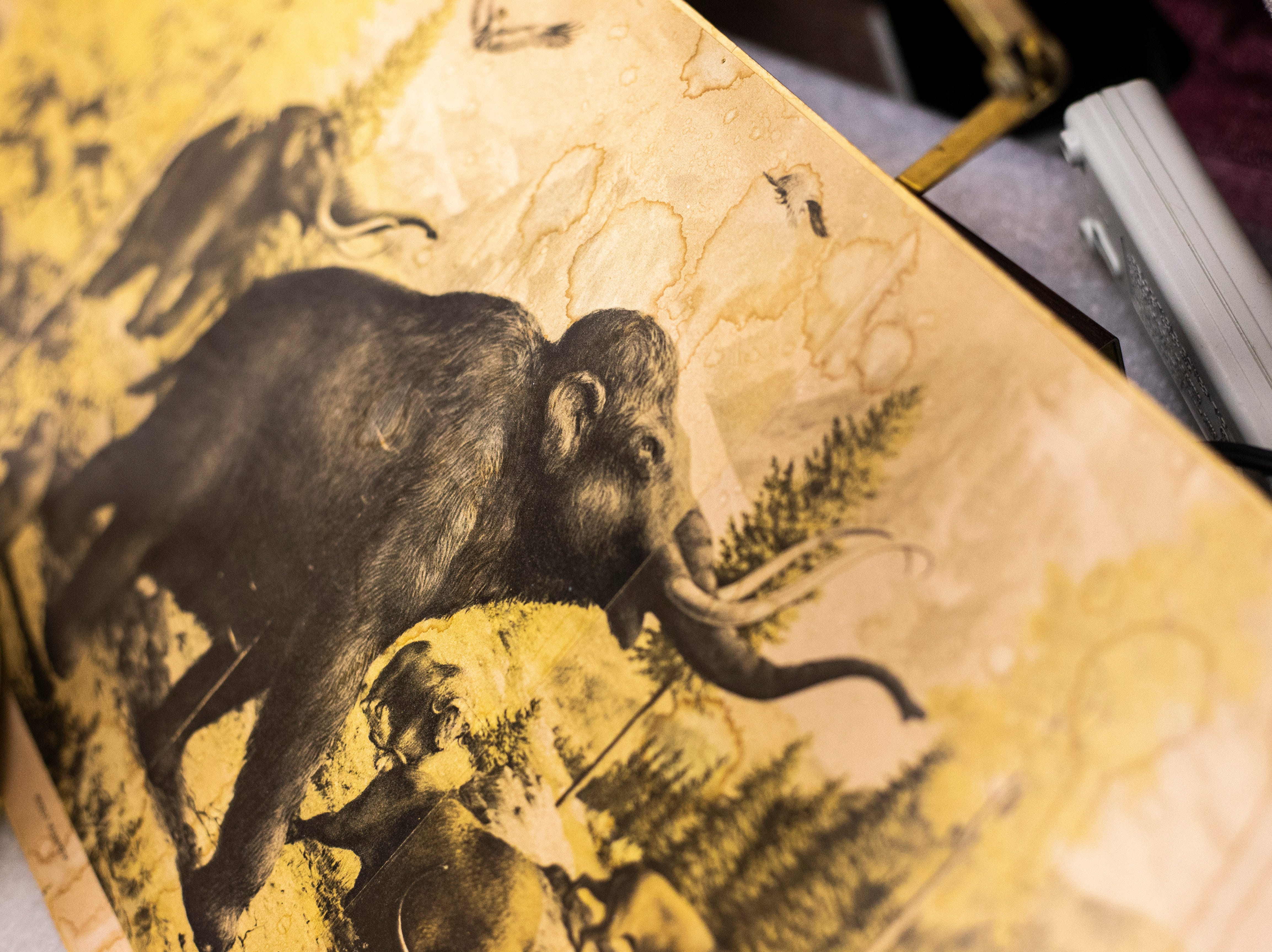 A piece of artwork featuring ice-age-era animals, Tuesday, May 14, 2019, at the University of Iowa Paleontology Repository on the University of Iowa campus in Iowa City, Iowa.