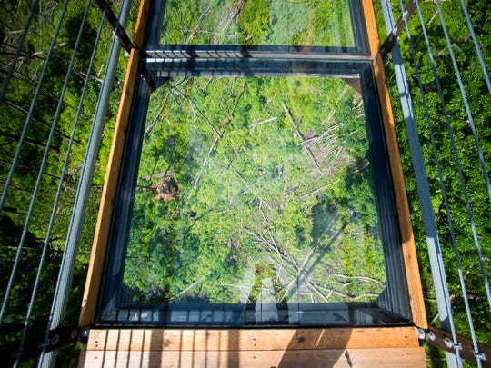 Looking down into the glass-floor panels in the middle of the Gatlinburg SkyBridge on Tuesday, May 14, 2019. The SkyBridge is North America's longest pedestrian suspension bridge and offers panoramic views of Gatlinburg and the Smoky Mountains.