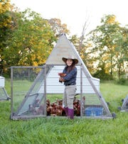 With movable A-frame chicken coops, Kelsey Jorissen's hens can be free range yet protected from hawks.