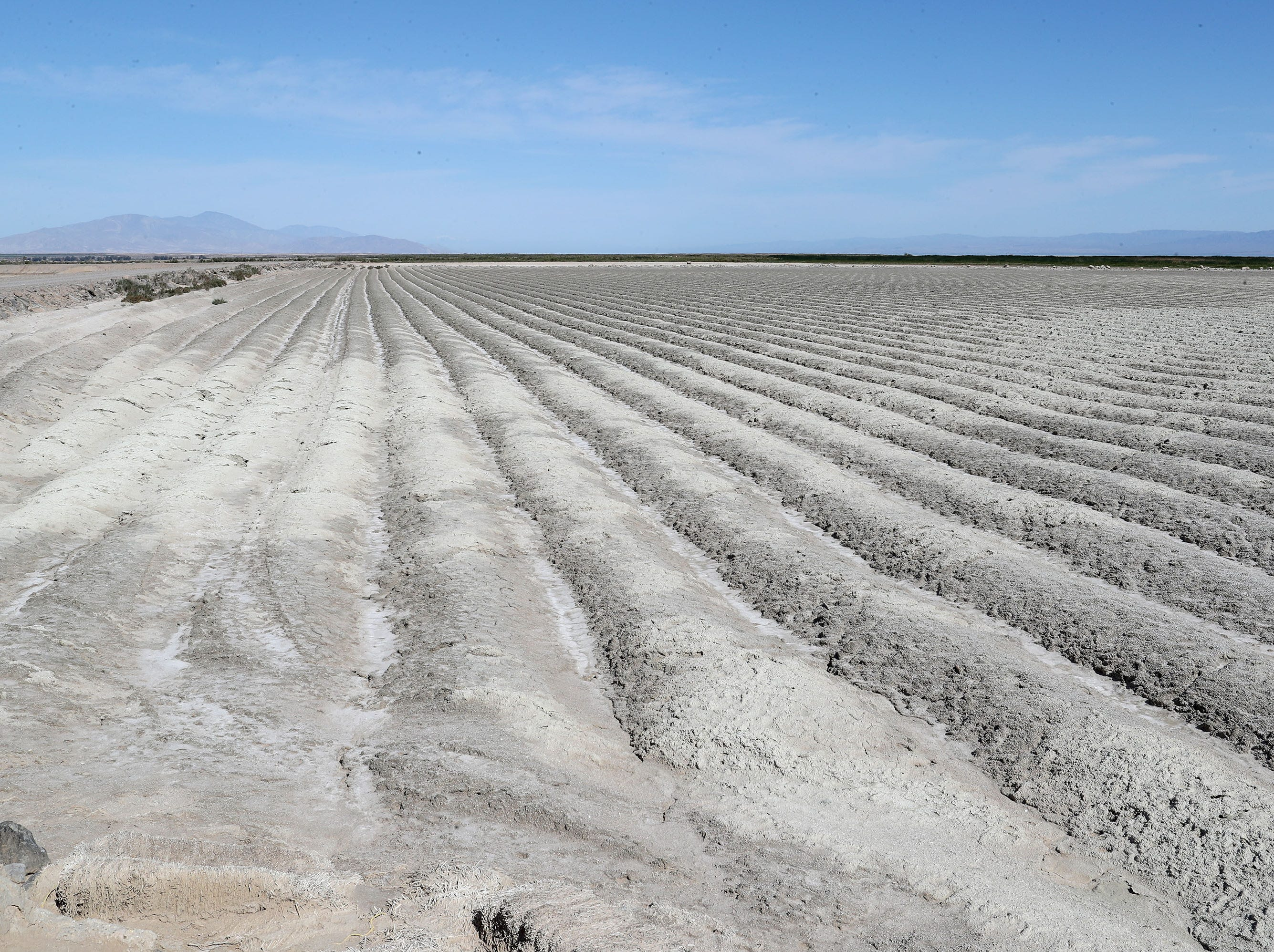 Shallow trenches plowed into exposed playa help cut down on airborne dust as the Salton Sea recedes away from the Elmore Desert Ranch near Brawley, April 11, 2019.