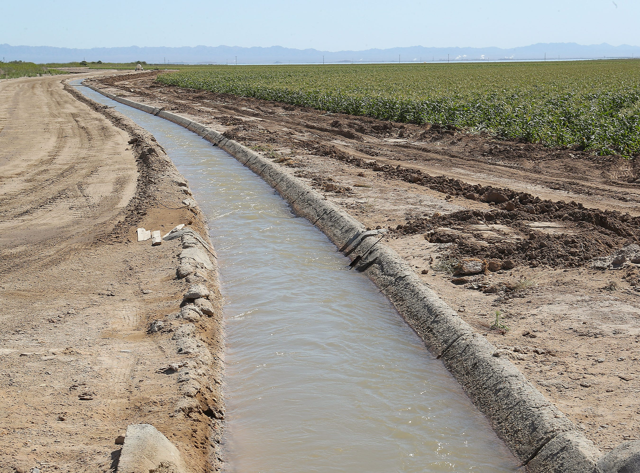 A canal carries water through agricultural fields on the Elmore Desert Ranch near Brawley, April 11, 2019.