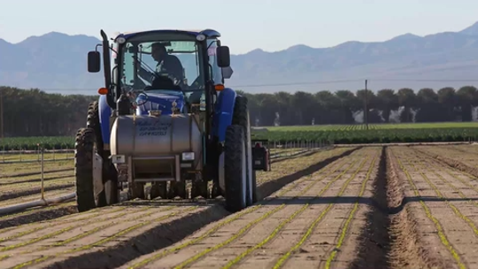 The eastern Coachella Valley generates about $1 billion annually in agriculture production.